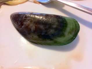 The glory of a green lipped mussel, fresh from the fishmongers.